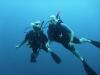 duiken-menjangan-21