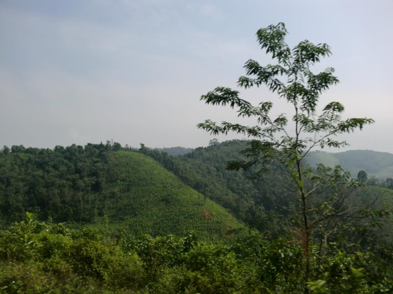 ho-chi-min-trail-85